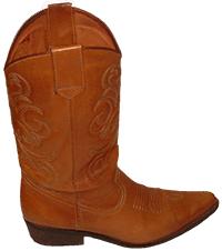 Cowboy boot (c) Natalie Jones