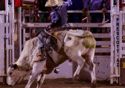 MASP-TIP-Rodeo-4thOfJuly-2017-9916-Bull-Riding-1200x800-40